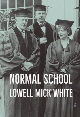 Normal School, Lowell Mick White, best academic satire, novel, reading, murder, noir, academic, higher education