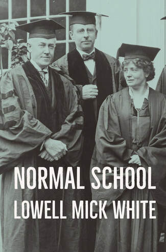 Normal School, Lowell Mick White, academia, higher education, food poisoning, job interview, campus visit, noir, murder
